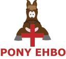 Je mag nooit zonder zadel op de rug van je pony zitten