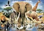 Olifanten zijn bedreigd