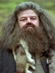 Hagrid is een halfreus