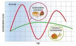 Welke diabetes vorm heeft niks te maken met de bloedsuikerspiegel?