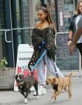 Ariana Grande heeft 8 honden