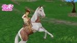 SSO paarden kijken altijd blij